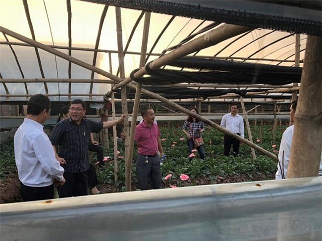 Khảo sát vườn hoa của người dân Hà Nội tại làng hoa Tây Tựu (Ảnh: Sở Công thương Lâm Đồng)