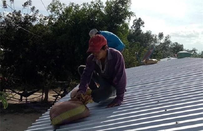 Người dân tranh thủ chèn chắn mái nhà trước khi bão tới (Ảnh: TA)