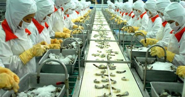 Theo VASEP, xuất khẩu tôm Việt Nam chưa có dấu hiệu phục hồi kể từ tháng 4 đến nay (ảnh TL)
