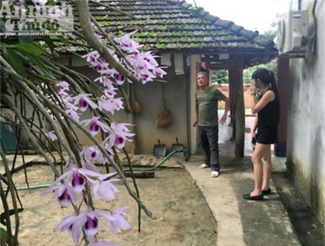 Vườn lan 'huyền thoại' có một không hai ở Tuyên Quang