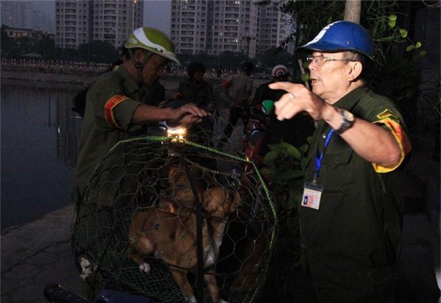 Sau đó khoảng 30 phút, 1 chú chó tại khu vực bờ hồ Đầm Hồng sa lưới
