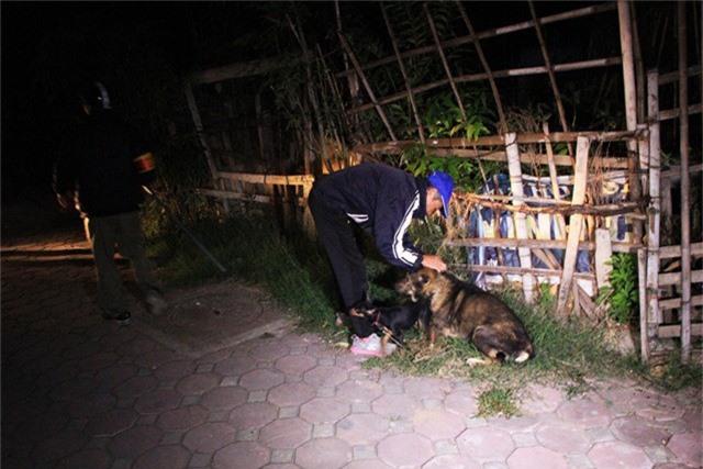 Lúc 5h50, đội bắt chó thả rông phát hiện 2 con chó không đeo rọ, không được xích tại khu vực Đầm Hồng, nhưng ngay sau đó chủ nhân của 2 chú chó đã ngay lập tức chạy ra để xích lại.