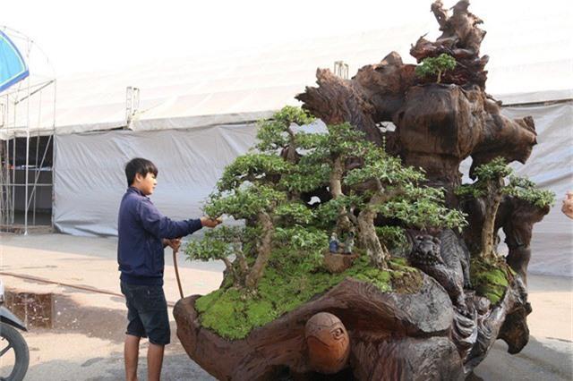 """Tác phẩm """"Tứ linh"""" được anh Thịnh trồng hàng cây bonsai Nhất Chi Mai trên phần gốc cây Sao nặng gần 2 tấn."""