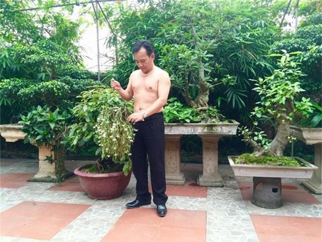 quang teo - chien thang do gia san khung: ai nhieu tien hon? hinh anh 8