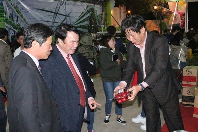 Cà chua thân gỗ (Magic-S), một loại trái cây mới rất đặc biệt cũng được giới thiệu tại hội chợ