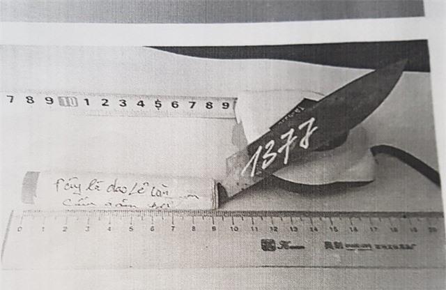Con dao gọt hoa quả tạo ra vết thương cho Lê Văn Sâm, ban đầu được xác định là của Sâm.