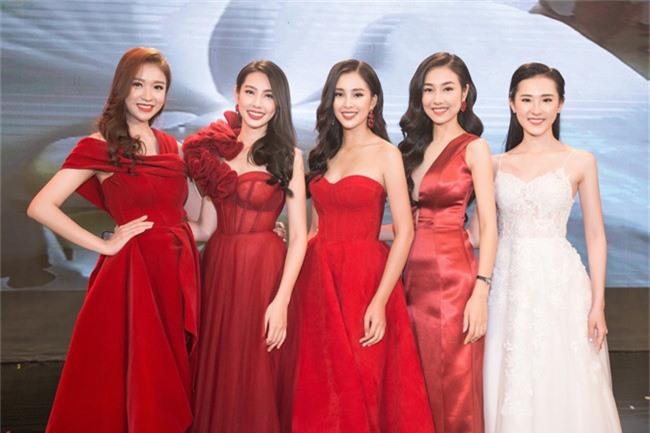 Hoa hậu Tiểu Vy bất ngờ diện đầm khoe ngực đầy nóng bỏng - Ảnh 5.