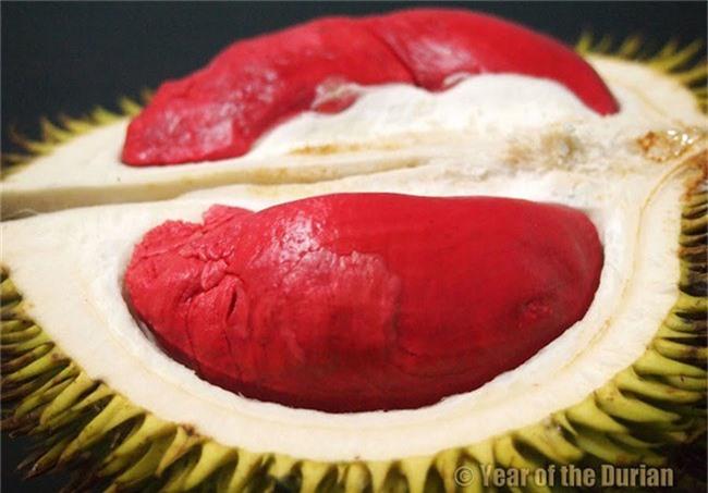"""Sầu riêng được mệnh danh là """"Vua của các loại trái cây"""" ở Malaysia"""