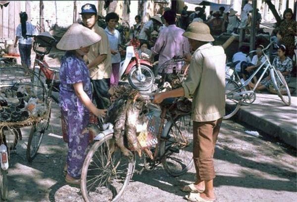 Chợ cóc những năm 1991 rất phổ biến ở Hà Nội. Người ta có thể mang đủ thứ ra chợ bán rong, từ gia cầm gà vịt tới hoa quả, thịt cá...