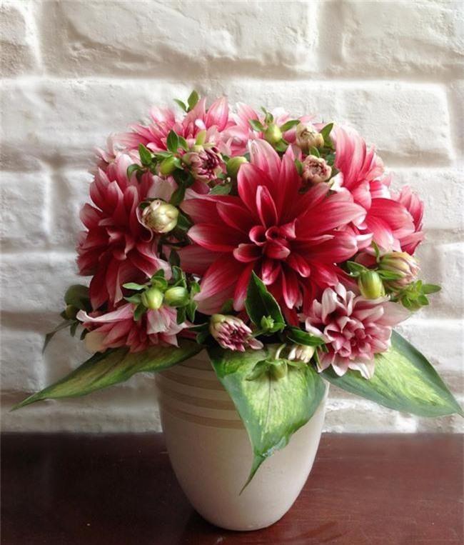 Những loại hoa trang trí nhà mà chỉ cần nhìn thấy là gợi nhớ đến Tết xưa - Ảnh 6.