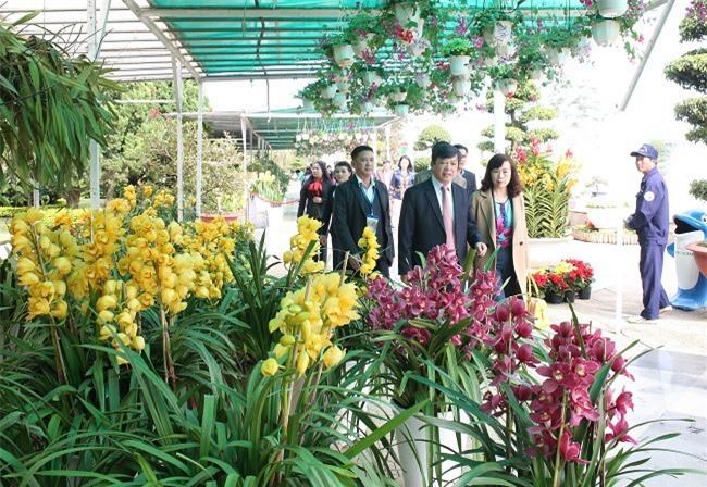 Địa lan, một trong những loại hoa đặc trưng và có giá trị của Đà Lạt (Ảnh: VH)