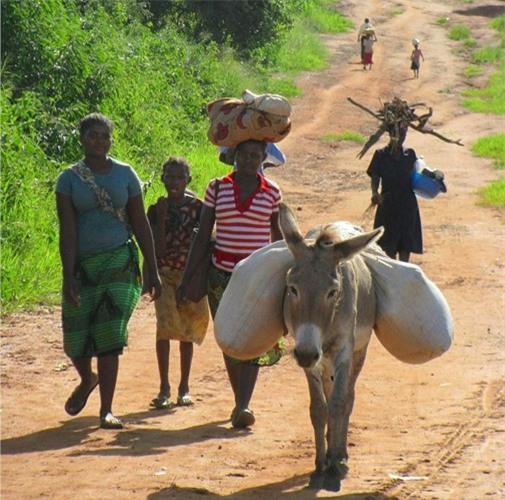 Đứng thứ hai trong danh sách này là một quốc gia Châu Phi nữa – Mozambique với GDP bình quân đầu người ước tính chỉ đạt 486 USD trong năm vừa qua. Cơ sở hạ tầng yếu kém, tình trạng thiếu các dịch vụ cơ bản cùng trang thiết bị máy móc nông nghiệp,…là những yếu tố gây tổn hại đến sự tăng trưởng kinh tế đất nước này.