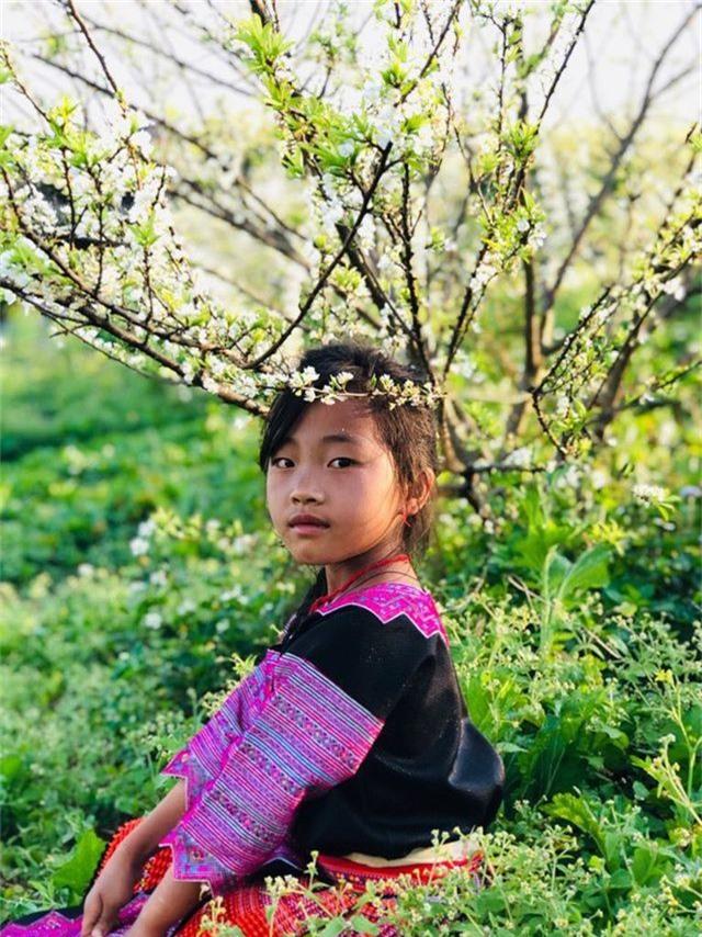 Mê mẩn những cánh đồng hoa đẹp như thiên đường ở Mộc Châu - 3