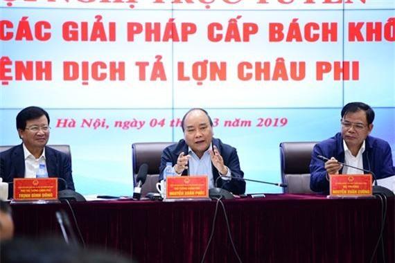 Thủ tướng Nguyễn Xuân Phúc chỉ đạo chống dịch tả lợn Châu Phi tại hội nghị trực tuyến
