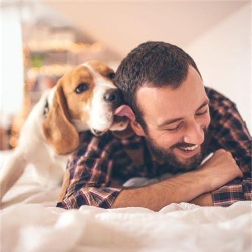 Những căn bệnh nguy hiểm có thể lây từ thú cưng - Ảnh 2.