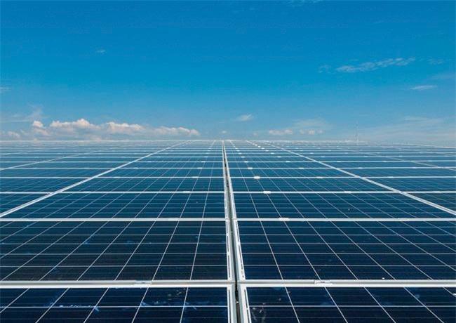 Điện tái tạo đang phát triển rầm rộ tại Ninh Thuận (Ảnh: TL)
