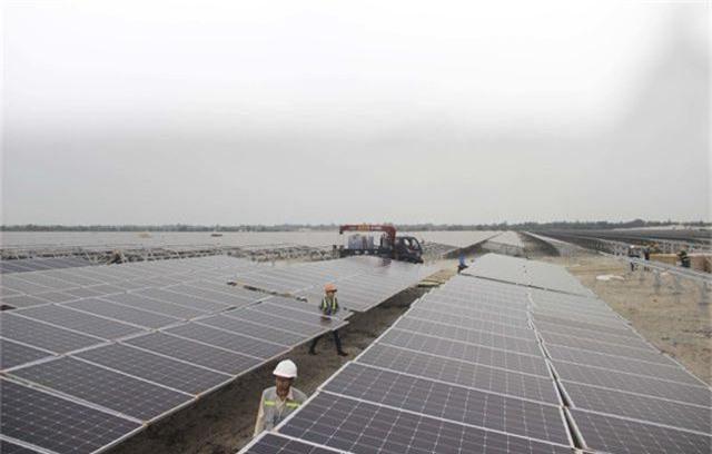"""Dự án điện mặt trời ngàn tỷ, kỳ vọng """"biến cát trắng… đẻ ra tiền""""  - 7"""