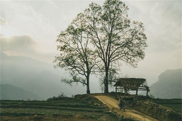 5 điểm săn mây đẹp nhất Việt Nam không thể bỏ lỡ trong tháng 3 - 6