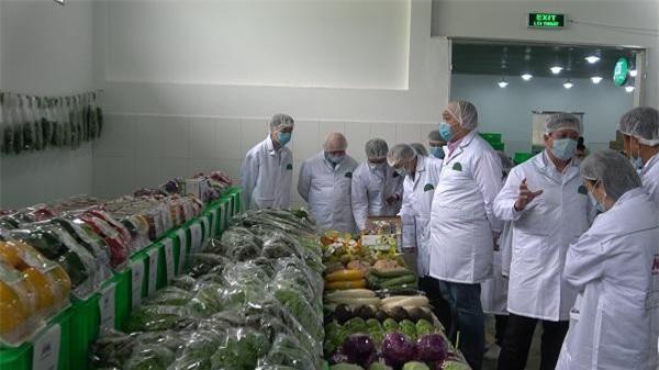 các nhà nhập khẩu rất quan tâm đến các mặt hàng rau hữu cơ và các loại rau đặc sản có giá trị cao của Việt Nam (Ảnh: TQ)