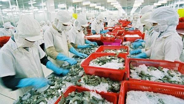 Thủy sản Việt Nam giàu tiềm năng xuất khẩu vào thị trường Trung Quốc. (Ảnh TL)