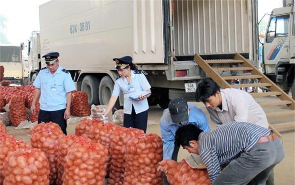 Nhu cầu về mặt hàng trái cây, rau quả của Trung Quốc hiện rất lớn, tuy nhiên chất lượng phải là yếu tố đầu tiên cần được các doanh nghiệp Việt Nam coi trọng (Ảnh: TL)