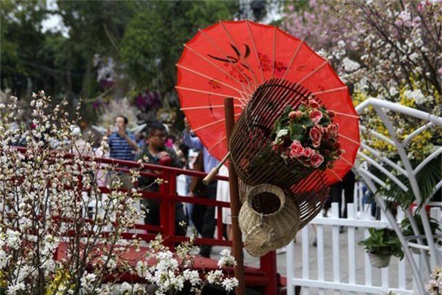 Ngắm hàng vạn cành hoa anh đào khoe sắc bên hồ Gươm - 11