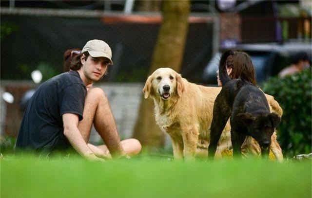 Nhiều người dân Hà Nội quen thả rông chó không rọ mõm - 10