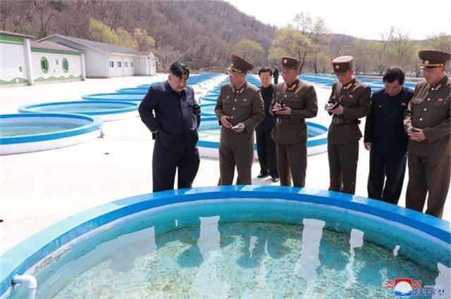 Ông Kim Jong-un thị sát không quân giữa lúc đàm phán bế tắc với Mỹ - 2