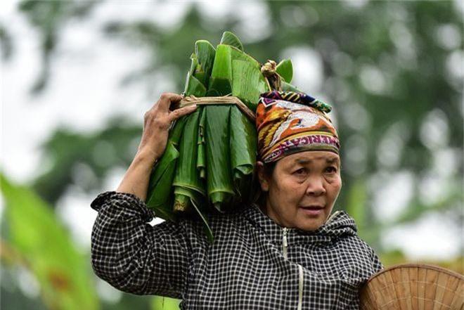 Gặp người phụ nữ hơn 35 năm hái lá chuối mưu sinh - 17
