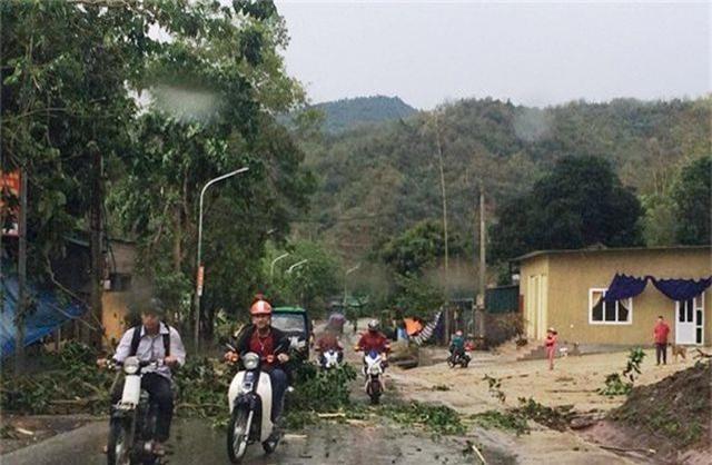 Liên tiếp mưa đá, lốc xoáy khiến hàng trăm ngôi nhà tốc mái - 2