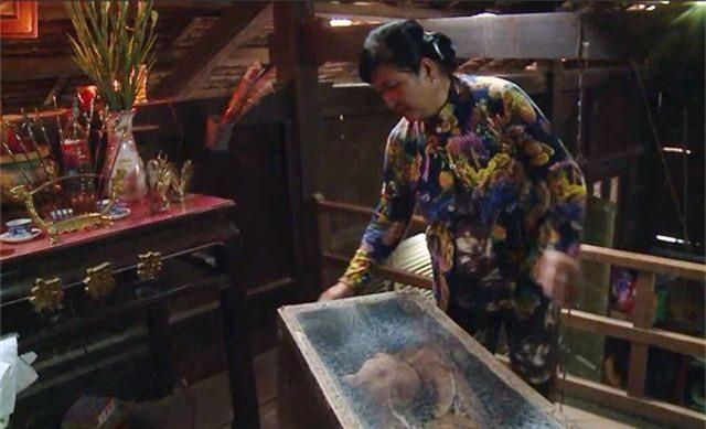 Đàn thiên nga được nuôi ở hồ Thiền Quang đã đẻ gần 20 quả trứng - 10