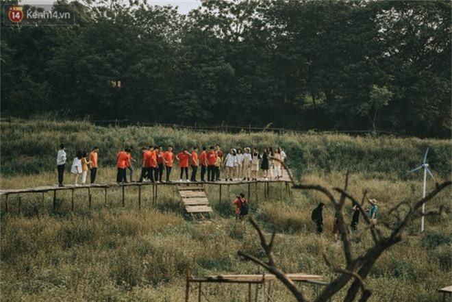Chẳng cần lên tận Hà Giang vì Hà Nội cũng đang có cánh đồng tam giác mạch ngút ngàn, nhìn thôi cũng đủ mát cả lòng - Ảnh 11.