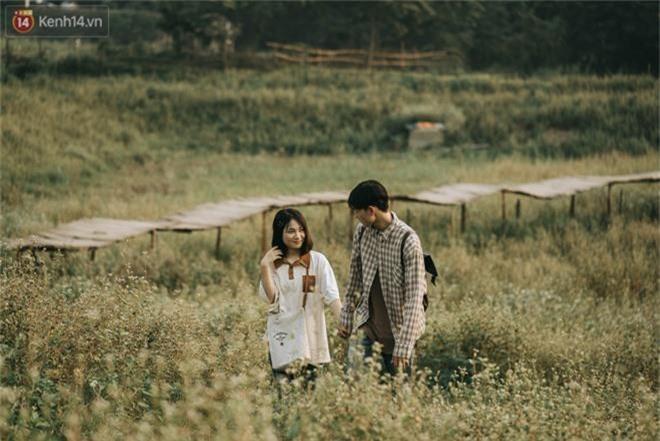 Chẳng cần lên tận Hà Giang vì Hà Nội cũng đang có cánh đồng tam giác mạch ngút ngàn, nhìn thôi cũng đủ mát cả lòng - Ảnh 13.