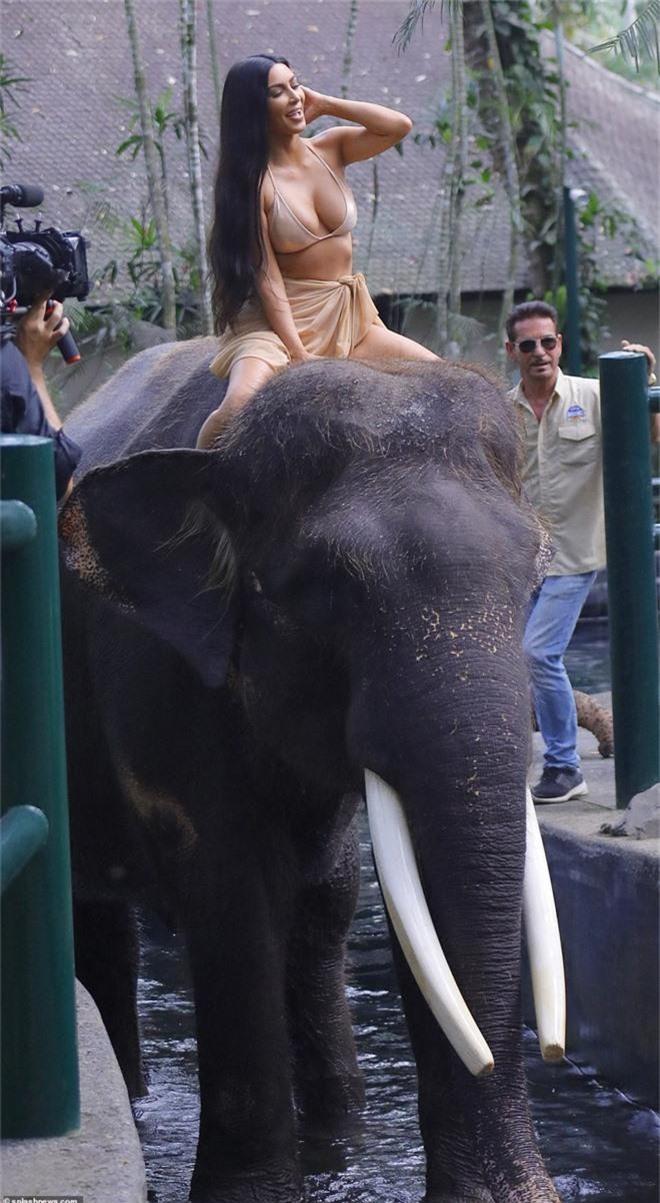 Cô Kim khoe ảnh đi xem cưỡi voi, vẫn là không quên khoe vòng 1 siêu khủng - Ảnh 4.