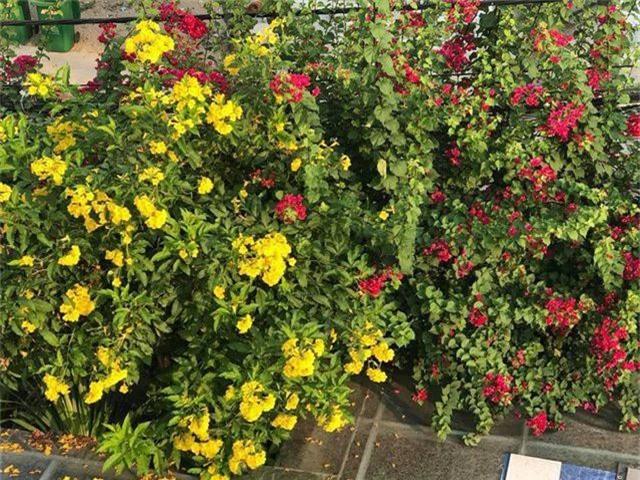 Ngắm căn biệt thự sang trọng ngập tràn hoa lá của Hồ Ngọc Hà - 11