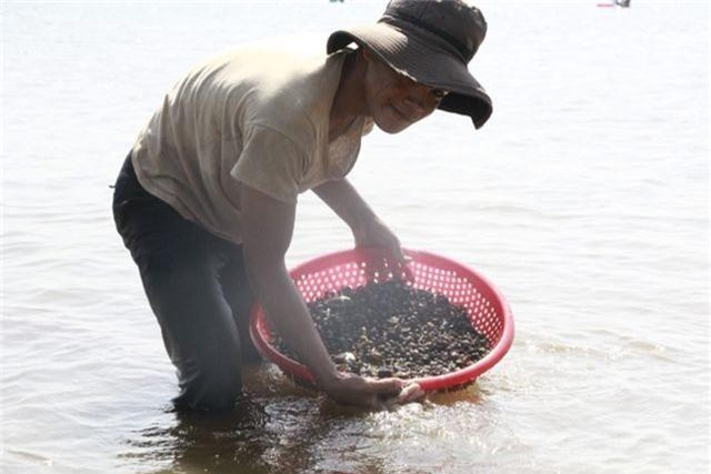 Đổ xô đi đãi hến mùa nước cạn ở hồ Ea Kao - 2