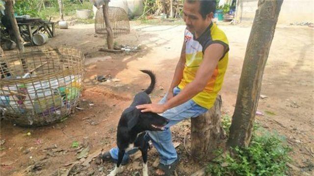 Thái Lan: Chú chó què gây bão vì cứu bé sơ sinh bị mẹ chôn sống - 2