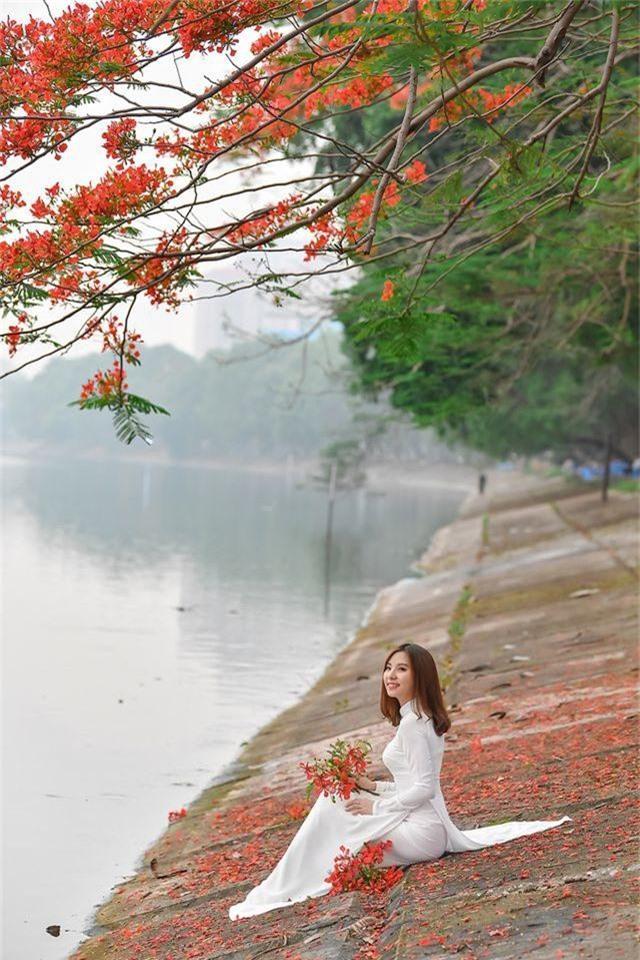 Thiếu nữ bâng khuâng kỷ niệm dưới tán phượng đỏ rực ven hồ - 4