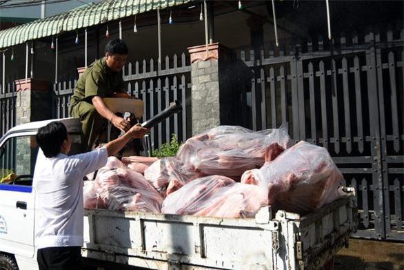 Lực lượng chức năng phun xịt khử trùng xe vận chuyển thịt heo nhiễm dịch tả heo châu Phi. (Ảnh: TTO) A LỘC