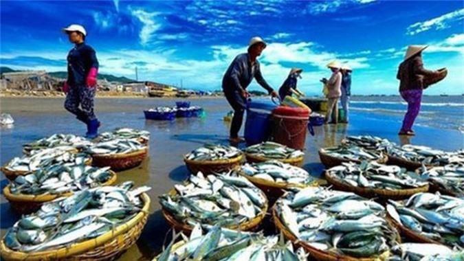 Trong quý 2 và những tháng tiếp theo xuất khẩu thủy sản sẽ khởi sắc hơn. (Ảnh TL)