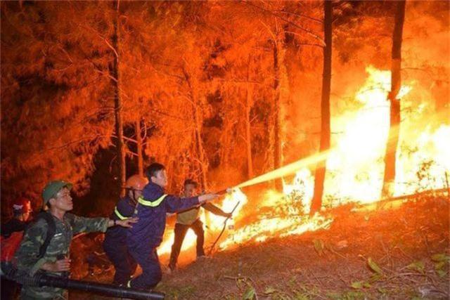 Cháy rừng trong đêm: Lửa lại phát dữ dội vào sáng sớm - 2