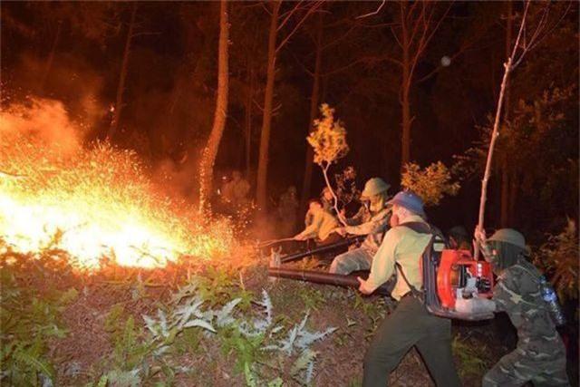 Cháy rừng trong đêm: Lửa lại phát dữ dội vào sáng sớm - 3