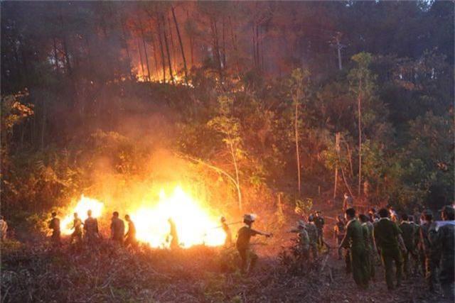 Hàng trăm người căng mình chữa cháy ở khu rừng cuồn cuộn lửa trong đêm - 7