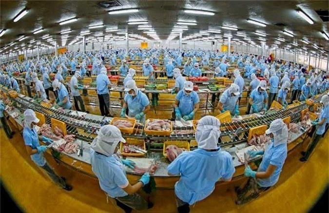 Hơn 70% doanh nghiệp dân doanh Việt Nam 'mù thông tin' về CPTPP và EVFTA