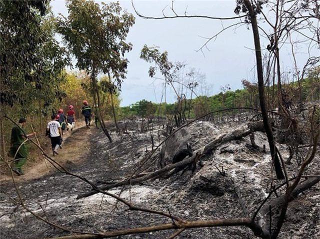 Cháy rừng suốt 1 ngày đêm tại Quảng Ngãi - 2