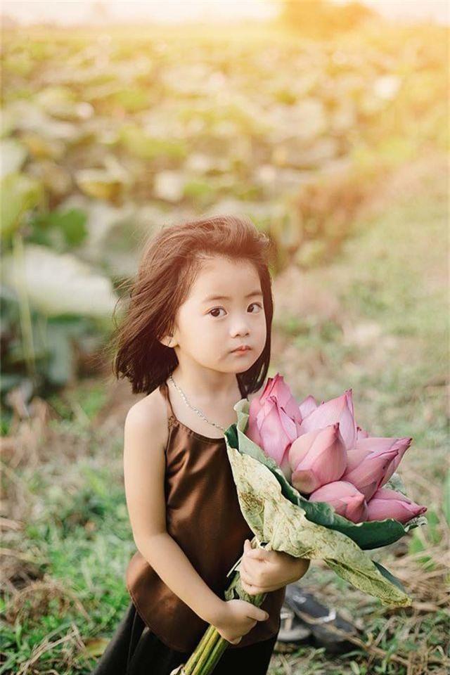 Bé gái Bắc Ninh xinh như thiên thần bên hoa sen - 2