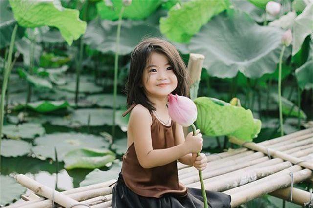 Bé gái Bắc Ninh xinh như thiên thần bên hoa sen - 4