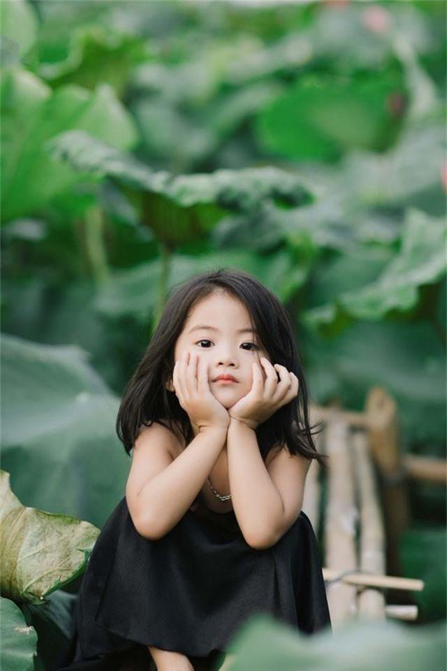 Bé gái Bắc Ninh xinh như thiên thần bên hoa sen - 6