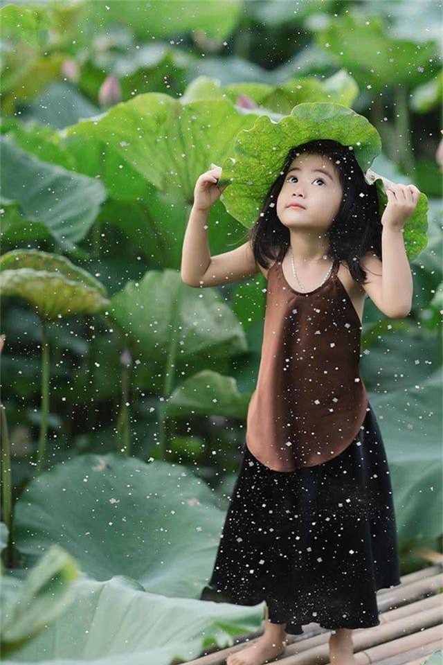 Bé gái Bắc Ninh xinh như thiên thần bên hoa sen - 8