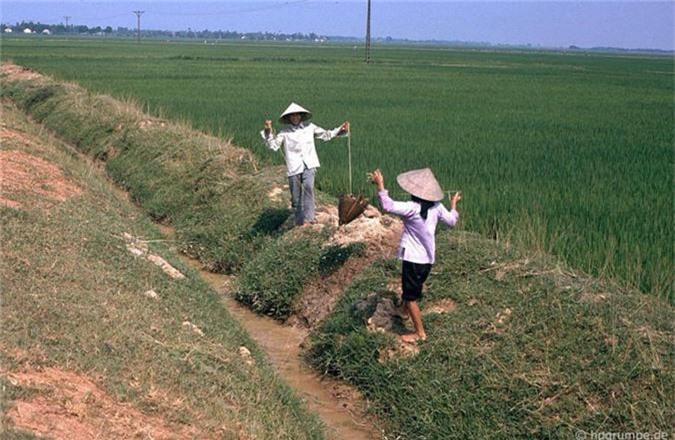 Hinh anh kho quen ve nong thon Ha Noi nam 1991-Hinh-10